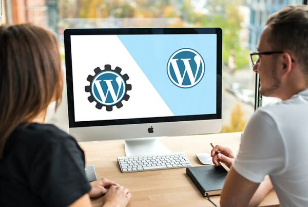 Choosing Between a Custom WordPress Theme and a Premium Theme