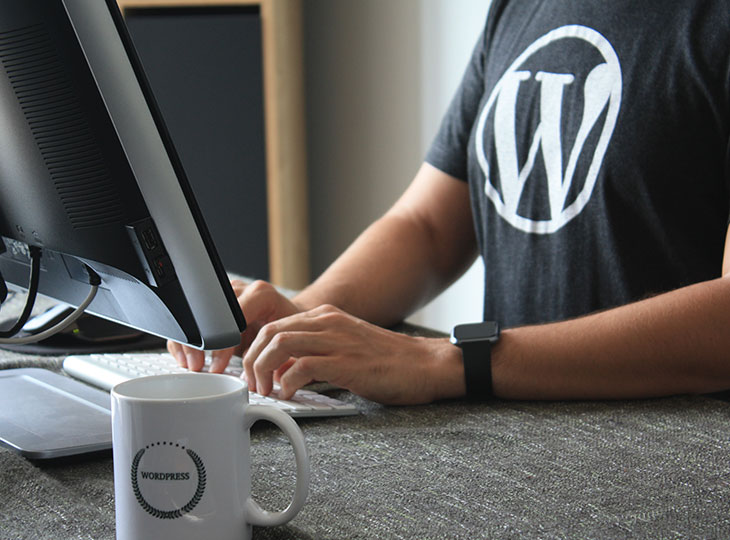 When-and-Why-Should-You-Hire-a-WordPress-Developer